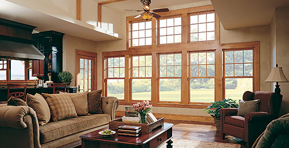 Marvin Ultimate Double Hung Windows